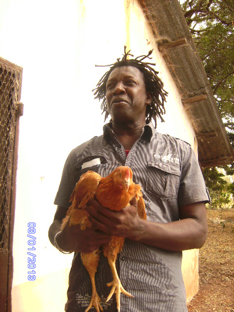 A chicken to change a life